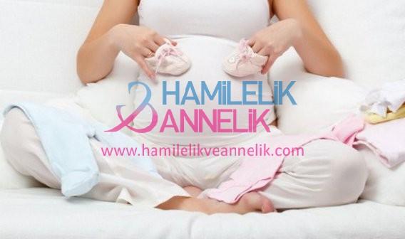 1403686325_hamile